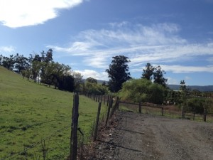 NoCal Fence