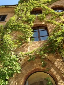 San Gimignano living wall