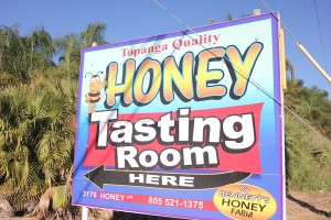 Honey tasting room