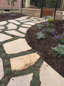 Permeable Paving - Flagstone w-Dymondia