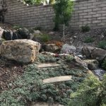 May in the Garden – Southern California Style